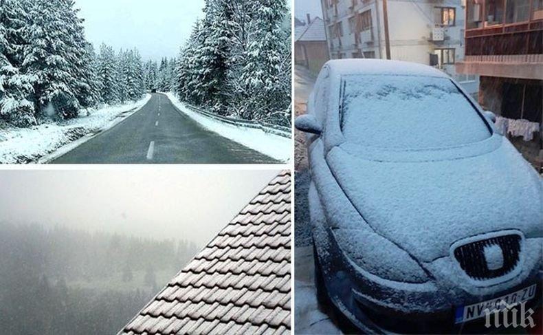 ВРЪЩА ЛИ СЕ ЗИМАТА? Сняг и виелици в Сърбия, стихията настъпва към България (ВИДЕО/СНИМКИ)