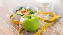 Учени от СЗО разкриха трите най-здравословни диети