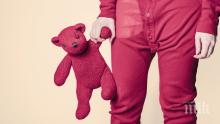 ШОКИРАЩИ ДАННИ: Всеки трети пълнолетен англичанин всяка нощ спи с... плюшените си играчки