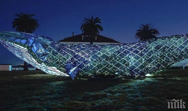 Екологична акция: В Сан Франциско гигантска пластмасова скулптура на кит постави световен рекорд (ВИДЕО)