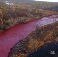 ШОКИРАЩО: Всички реки на планетата отровени с антибиотици