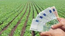ВАС: Наложените по европрограми глоби са незаконни