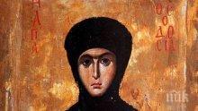 СВЯТ ЖИВОТ: Света Теодосия - пример за добродетел и помощ за бедните