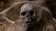 НЕВЕРОЯТНО ОТКРИТИЕ: Намериха праисторически скелет в София