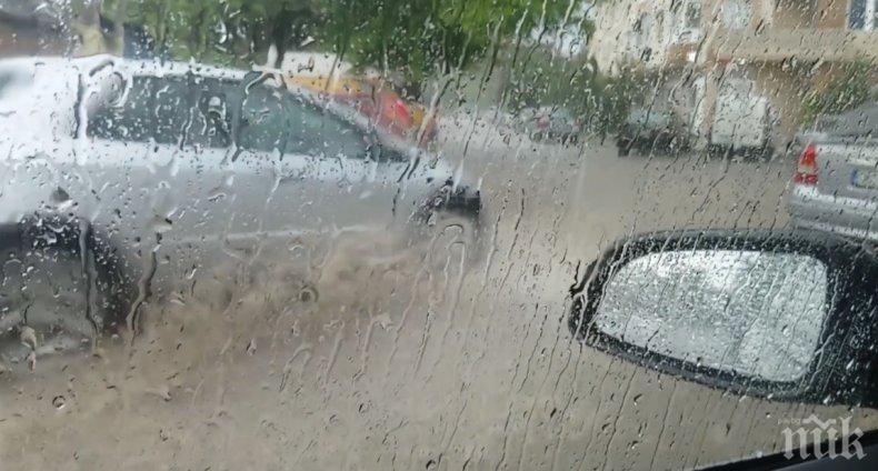 Враца с рекорд по валежи