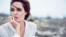 НА БРАД ПИТ МУ ПИСНА: Анджелина Джоли заплашена с глоба заради протакане на развода й