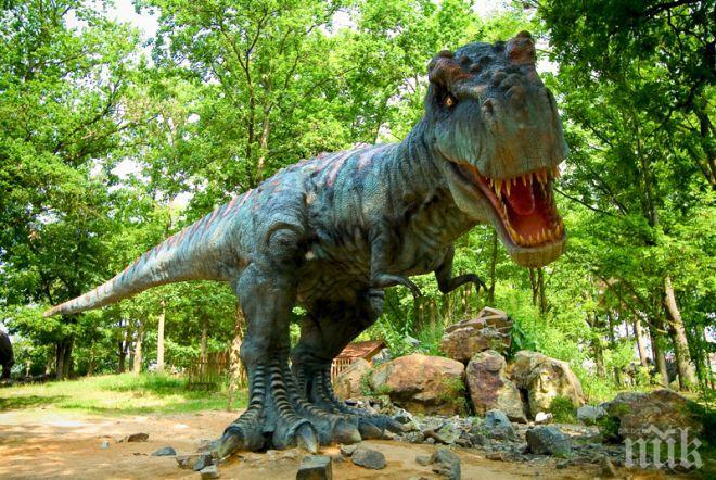 Уникално: Откриха следи от динозаври в Китай