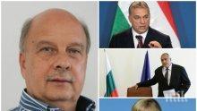 САМО В ПИК! Георги Марков с ексклузивен анализ за бъдещето на ЕС: Идва политическото земетресение и край на либералите