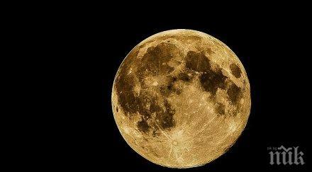 НЕВЕРОЯТНО: Армстронг срещнал извънземни на Луната?