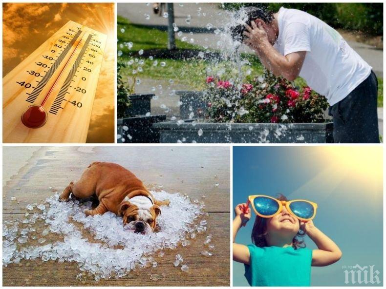 ГОРЕЩИТЕ ПРОДЪЛЖАВАТ: Слънцето ще грее безмилостно, температурите ще достигнат 34 градуса