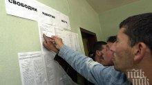 Само 2% от българите бачкат на половин работен ден