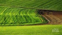 Вдига се цената на земеделската земя