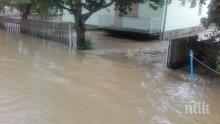 Сръбски свещеник със страшно предупреждение: Потопът е наказание Божие заради хомосексуалността на премиера