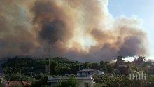 ПЛАМЪЦИ: Пожар избухна близо до Атина (СНИМКИ/ВИДЕО)