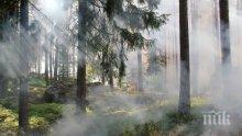 ВНИМАНИЕ: Обявиха екстремален индекс за опасност от пожари в Добричко