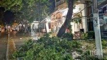 Външно с нови подробности за ужаса на Халкидики - бурята наводнила къщата на българка, тя се скрила в автомобил (ВИДЕО)