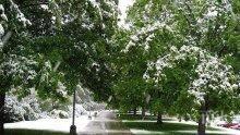 Сняг заваля през юли в Румъния