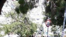 Кола помете две жени в Бургас, водачът оказал първа помощ на пострадалите (СНИМКА)