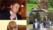 ЕКСКЛУЗИВНО В ПИК - Яне Янев за незаконната сеч в Сандански: Вярвам, че Борисов ще се справи успешно с феодалите и самозабравилите се местни тарикати