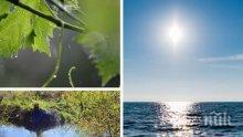 ЛЯТОТО СЕ ЗАВРЪЩА: Слънцето ще бъде щедро. Само на отделни места ще има краткотрайни валежи (КАРТА)