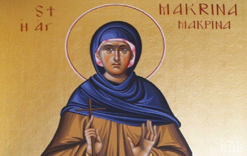 СВЯТОСТ И ВЯРА: Света преподобна Макрина е сестра на едни от най-великите светци