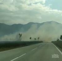 СИГНАЛ ДО ПИК: Пожар гори край Враца, пътят не се вижда от гъст дим (ВИДЕО/СНИМКИ)