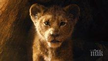 """""""Цар Лъв"""" е най-гледаният филм у нас"""
