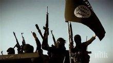 Сърбия: САЩ да спрат да въоръжават косовските членове на Ислямска държава