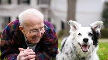 След като надживя стопанина си: Почина най-умното куче в света (СНИМКИ)
