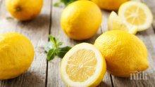 НОВА ТЕНДЕНЦИЯ: Разработват спортни дрехи с дъх на лимон
