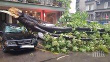 ДРАМА: Четирима пострадаха след бурята във Варна