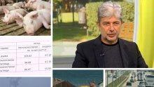 ГОРЕЩА ТЕМА - Министър Нено Димов: Задава ли се екокатастрофа заради чумата по свинете и как ще се справим с мръсния въздух и дивото къмпингуване