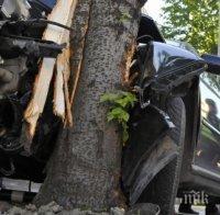 Пишман крадец задигна джип и се заби в дърво