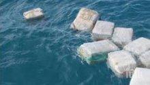 Буря изхвърли на брега кокаин за 2 млн. долара в Нова Зеландия