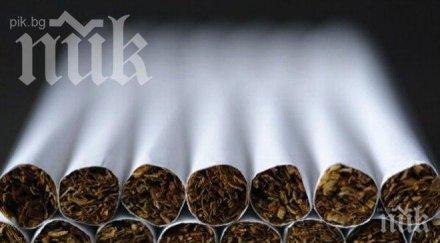 Иззеха 5540 къса нелегални цигари