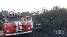 Пожар гори в района на дупнишкото село Тополница