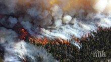 Сибир продължава да гори! 200 пожара се разпростират на площ по-голяма от Люксембург (ВИДЕО)