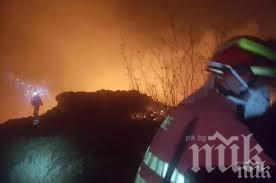 Кола и зайчарник изгоряха при пожар в село Звегор