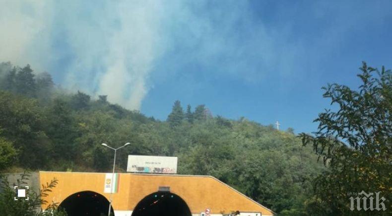 """ИЗВЪНРЕДНО: Пожар гори на изхода на Дупница, шофьорите да внимават на """"Струма"""" (СНИМКИ)"""