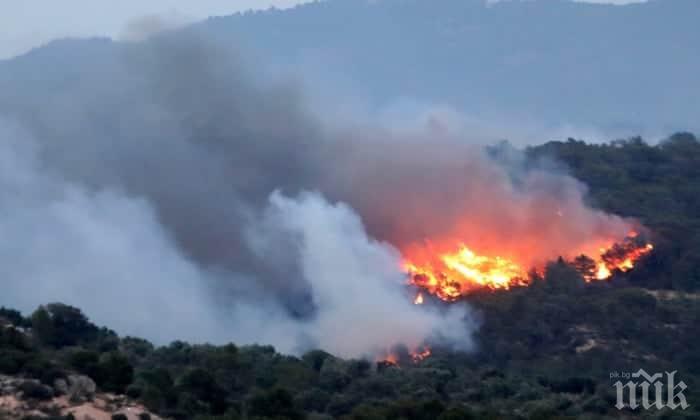 ОГНЕН АД НА САМОТРАКИ: Хиляди туристи, сред които и българи, остават в капан