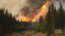 ЕКСТРЕМНО: Обявиха пожароопасност за пет области (КАРТА)