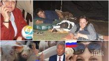 ПИК до немската АРД: Защо пуснахте фалшива новина за блокадата край Сливен? Организаторите са политици и признаха, че са изравяли останки от прасета (СНИМКИ/ВИДЕО)