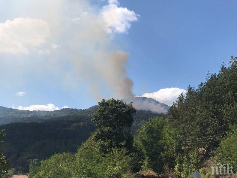 Локализираха пожара край София