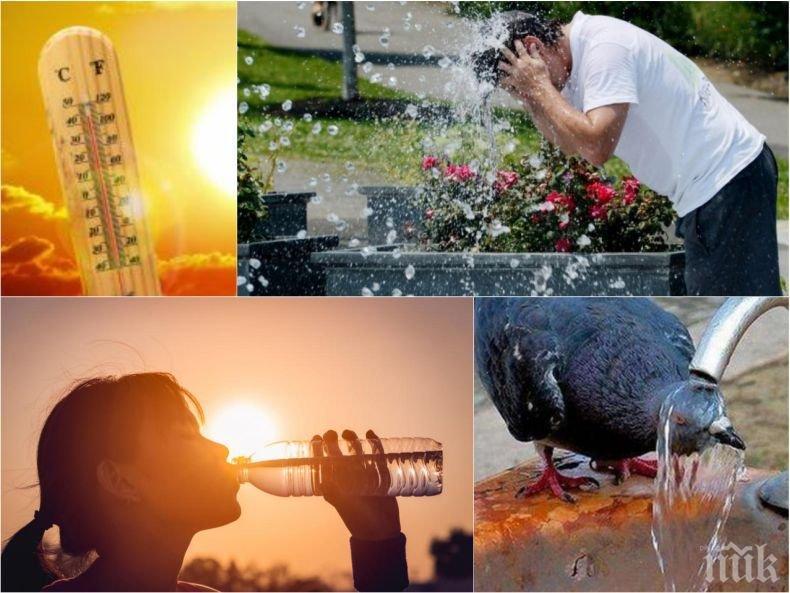 ТОПЛОТО ЛЯТО СЕ ВРЪЩА: Слънцето ще грее щедро, температурите ще достигнат 30 градуса