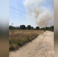 Горски пожар избухна в района на двореца Кричим