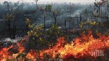 КАКВО СЕ СЛУЧВА: След Сибир пламна и Амазонската джунгла