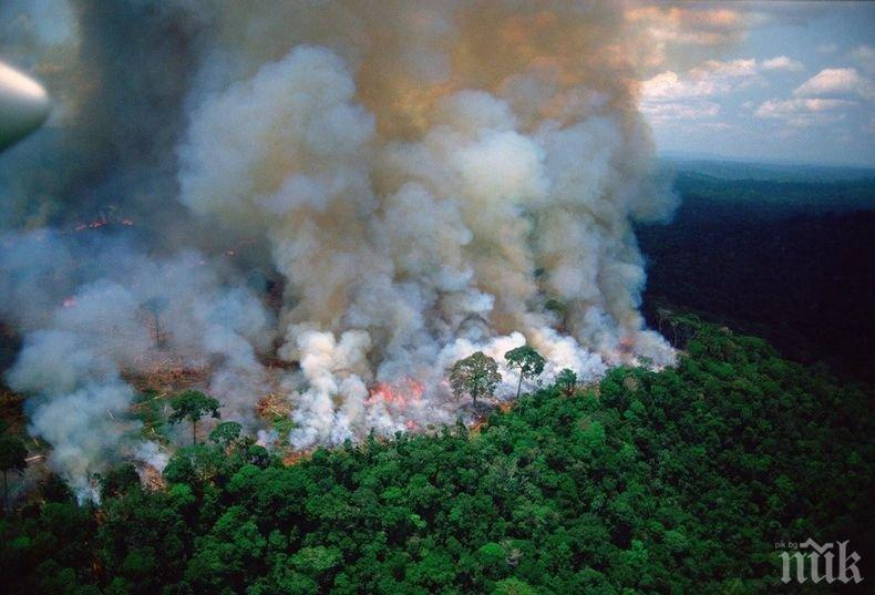 ПАК ПОЖАР! Пламнаха 120 декара гора край град Ветрен