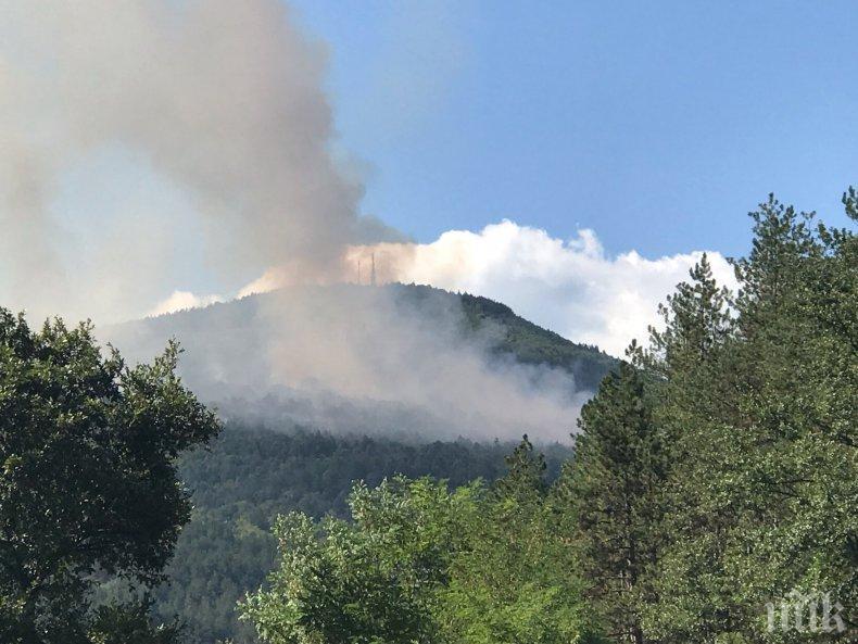 ЕДНА ИСКРА И КРАЙ: Опасност от пожари в 14 области в страната (КАРТА)