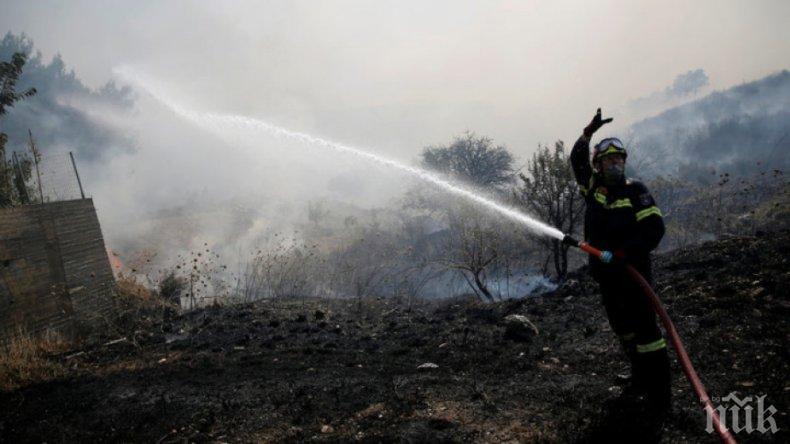 Овладяха пожара, избухнал до двореца Кричим