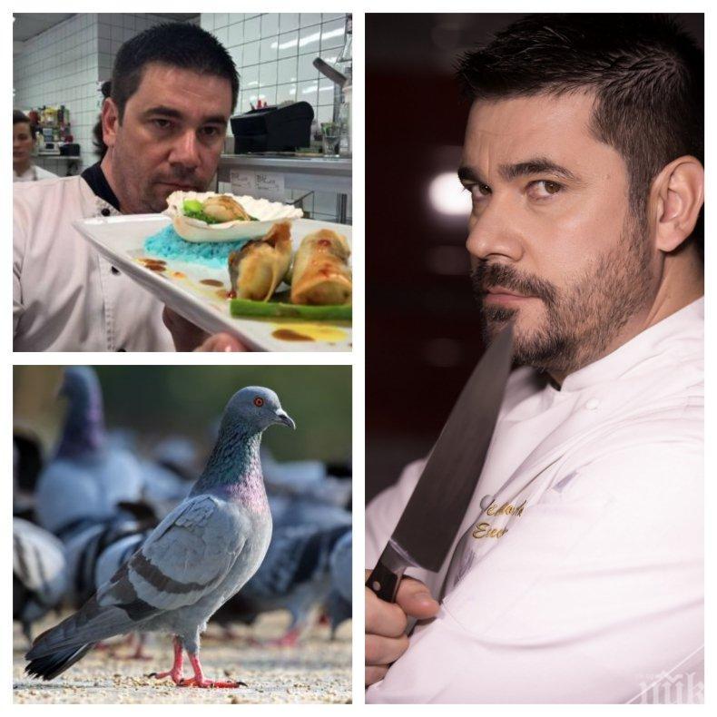 СКАНДАЛ: Еколози погнаха шеф Ангелов - готвачът превърнал ресторанта си в гробище за гълъби (СНИМКА)